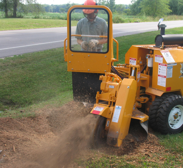 An image of stump grinding service in Fair Oaks.